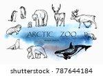 vector illustration. pen drawn... | Shutterstock .eps vector #787644184