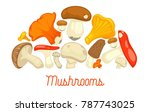 mushrooms edible mushrooming... | Shutterstock .eps vector #787743025