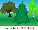 infographics of young spring... | Shutterstock .eps vector #787758349