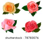 Group Of A Beauty Roses On A...