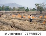 Small photo of Gia Lai , Vietnam - March 12, 2017: Countryside field with fire made with dry rice straw in Gia Lai, central highland of Vietnam. Drought keep happening in the area for recently years.
