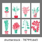 decorative indoor plants  in... | Shutterstock .eps vector #787991665