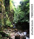 green forest hill | Shutterstock . vector #788024005