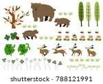 material of bear and spring... | Shutterstock .eps vector #788121991