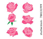 flowers roses  buds and green... | Shutterstock .eps vector #788131999