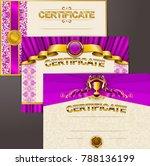 set of elegant templates of...   Shutterstock .eps vector #788136199