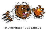 a bear angry animal sports... | Shutterstock .eps vector #788138671