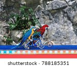 Small photo of parrots' bike race