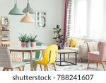 aloe in pink pots on wooden... | Shutterstock . vector #788241607