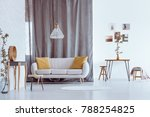 natural gray and white...   Shutterstock . vector #788254825