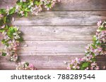 spring blooming branches on... | Shutterstock . vector #788289544