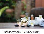 thai spa massage compress balls ... | Shutterstock . vector #788294584