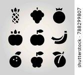 fruits vector icon set.... | Shutterstock .eps vector #788299807