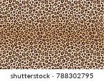 animal leopard brown beige...   Shutterstock .eps vector #788302795