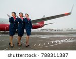 st.petersburg  russia   11 nov. ... | Shutterstock . vector #788311387
