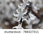 crystal floral lights   Shutterstock . vector #788327311