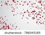rose petal falling. confetti... | Shutterstock .eps vector #788345185