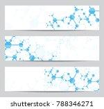 set of modern scientific... | Shutterstock .eps vector #788346271