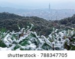 Small photo of Rare snowfall in Taipei City under the influence of a strong cold air mass on a hazy winter day with view of Taipei 101 Tower in XinYi District downtown & silhouette of distant mountains in background