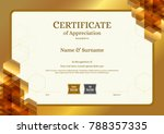 luxury certificate template... | Shutterstock .eps vector #788357335