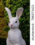 Small photo of the stature of the rabbit and the nature grass background