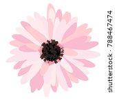 gerbera daisy isolated. vector... | Shutterstock .eps vector #788467474