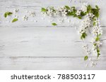 background with flowering...   Shutterstock . vector #788503117