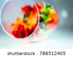 glass vase filled with red rose