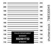 criminal mug shot line. blank... | Shutterstock .eps vector #788530045