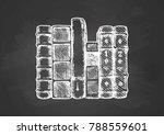 vector illustration of the... | Shutterstock .eps vector #788559601