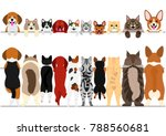 Stock vector standing small dogs and cats front and back border set 788560681
