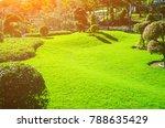 sunlight shines on the green... | Shutterstock . vector #788635429