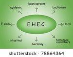 ehec epidemic diagram | Shutterstock . vector #78864364