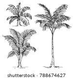 Set Of Hand Drawn Trees  ...