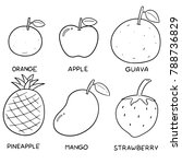 vector set of fruits | Shutterstock .eps vector #788736829