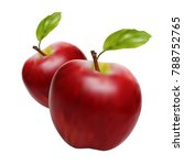red apple isolated. beautiful... | Shutterstock .eps vector #788752765