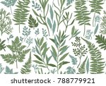 botanical hand drawn... | Shutterstock .eps vector #788779921
