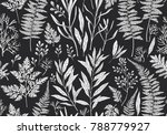 botanical hand drawn... | Shutterstock .eps vector #788779927