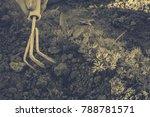 gardening  weeding weeds....   Shutterstock . vector #788781571