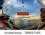 fish eye lens  operation... | Shutterstock . vector #788837185