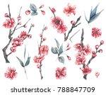 Set Of Watercolor Spring Natur...