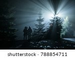 couple under christmas tree in... | Shutterstock . vector #788854711