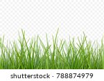 green grass meadow border... | Shutterstock .eps vector #788874979