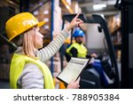 Young Warehouse Workers Working ...
