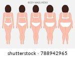 vector illustration human body... | Shutterstock .eps vector #788942965