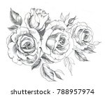 hand drawn line art roses in... | Shutterstock . vector #788957974