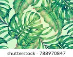 tropical leaves  jungle... | Shutterstock . vector #788970847