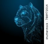 abstract image of tiger in the... | Shutterstock .eps vector #788972014