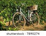 Old bike in vineyard in France - stock photo