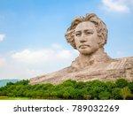 changsha hunan china 28 august... | Shutterstock . vector #789032269